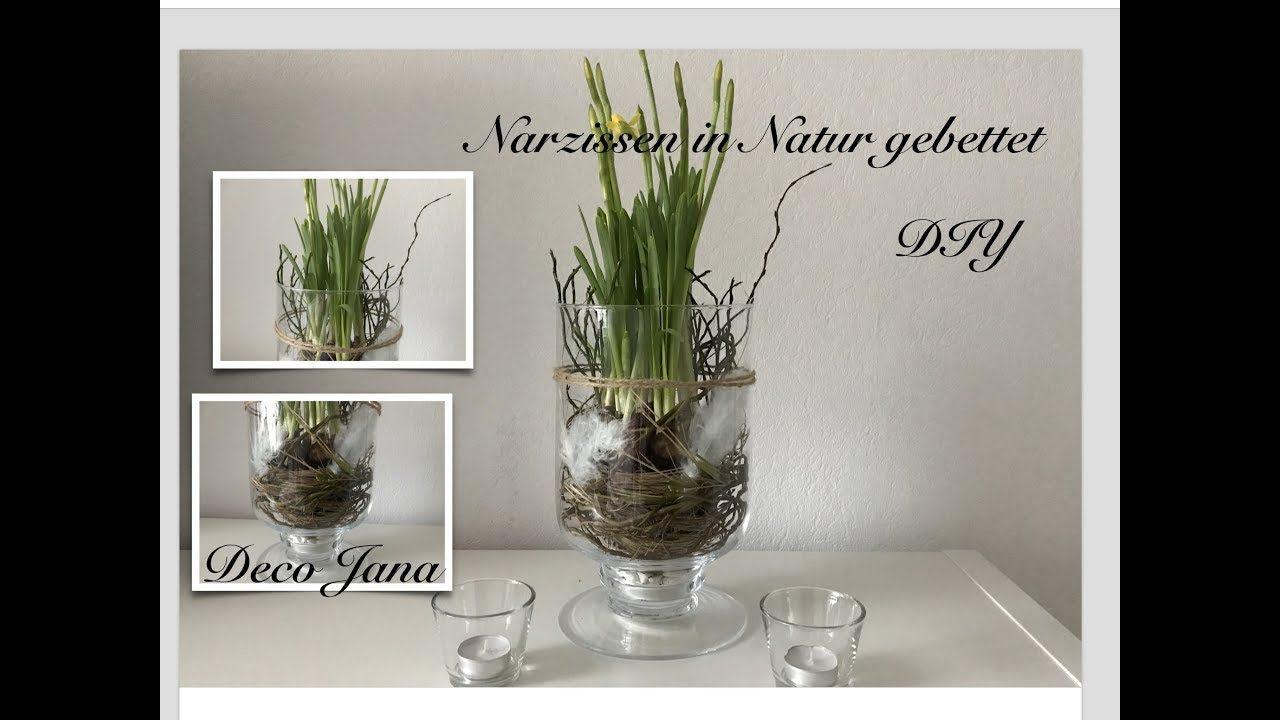 Diy Fruhling Im Glas Fruhlingsdeko Narzissen Natur Pur Deco Jana