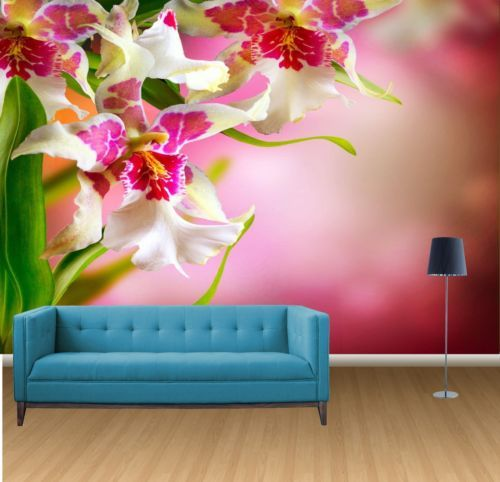 65€,Flowers-Design-Orchid-Wall-Mural-Photo-Wallpaper-GIANT-WALL ...