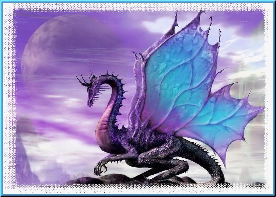 Dragons...