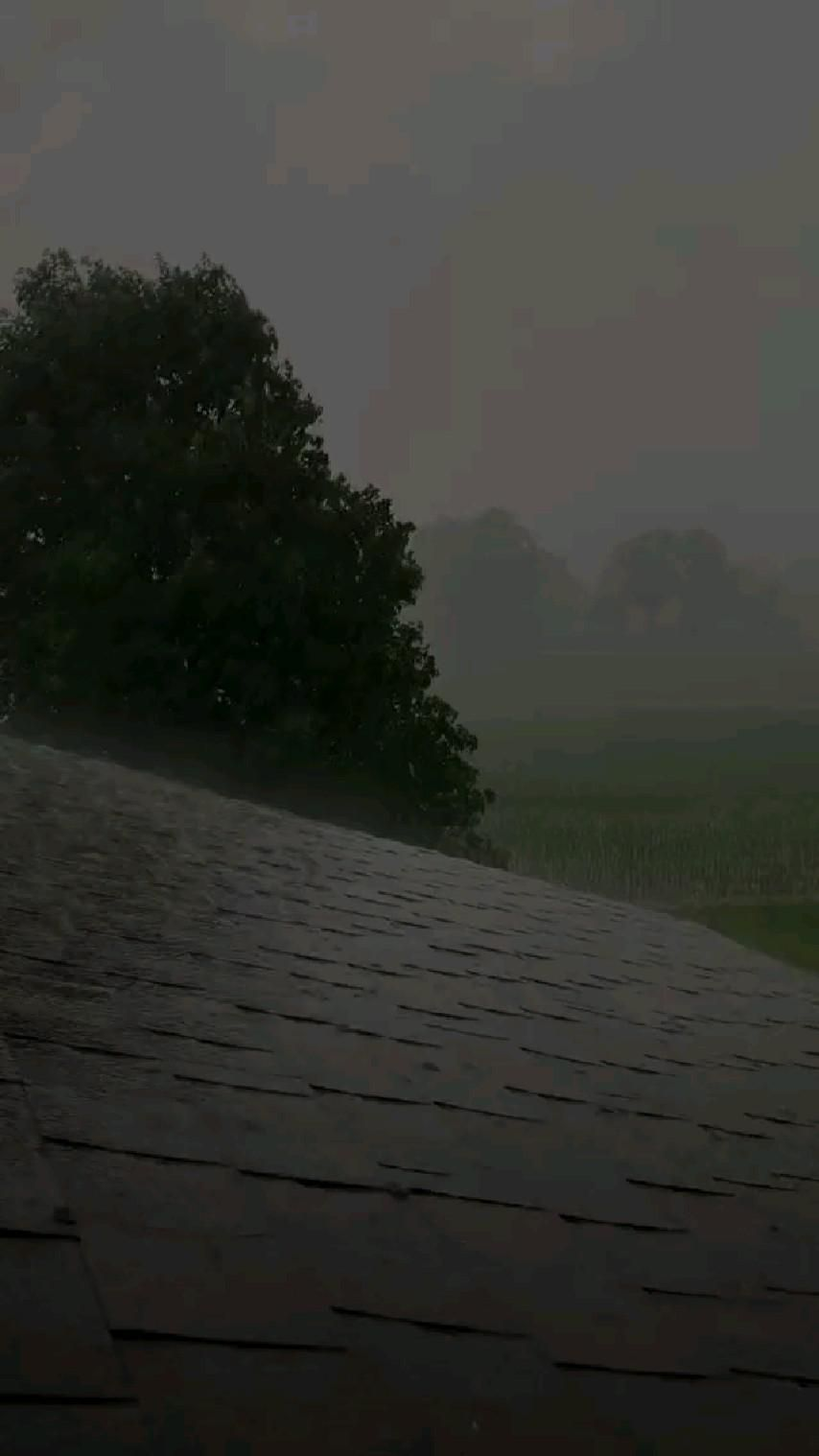 Beautiful Raining Video Emotions