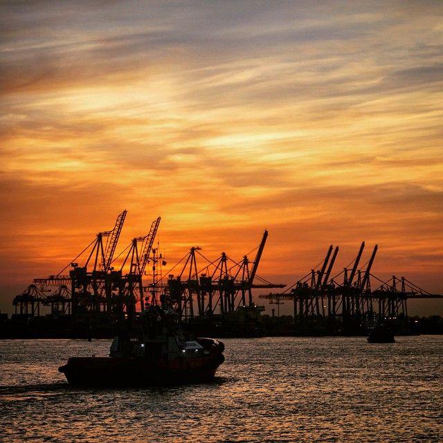 #hamburg #Hafen #hanse #portofhamburg #Container #containerhafen #sunset #bestoftheday #picoftheday #photooftheday #instagood