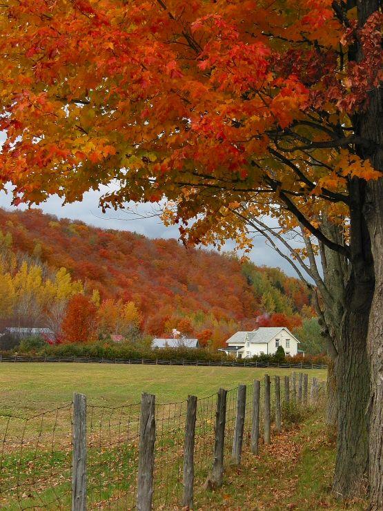 Autumn colors in Quebec.: Photo by Photographer Gaetan Chevalier - photo.net