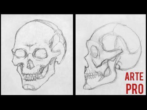 Como Dibujar Una Calavera Paso A Paso Youtube Como Dibujar Una Calavera Como Dibujar Calaveras Como Dibujar