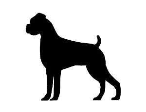 Boxer image - vector clip art online, royalty free & public domain ...