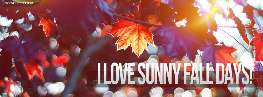 autumn quotes tumblr Google Search Fall facebook cover