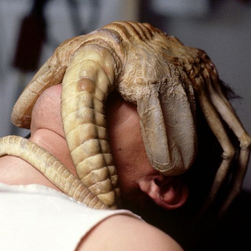 The facehugger from Alien shown here attached to Kane ...