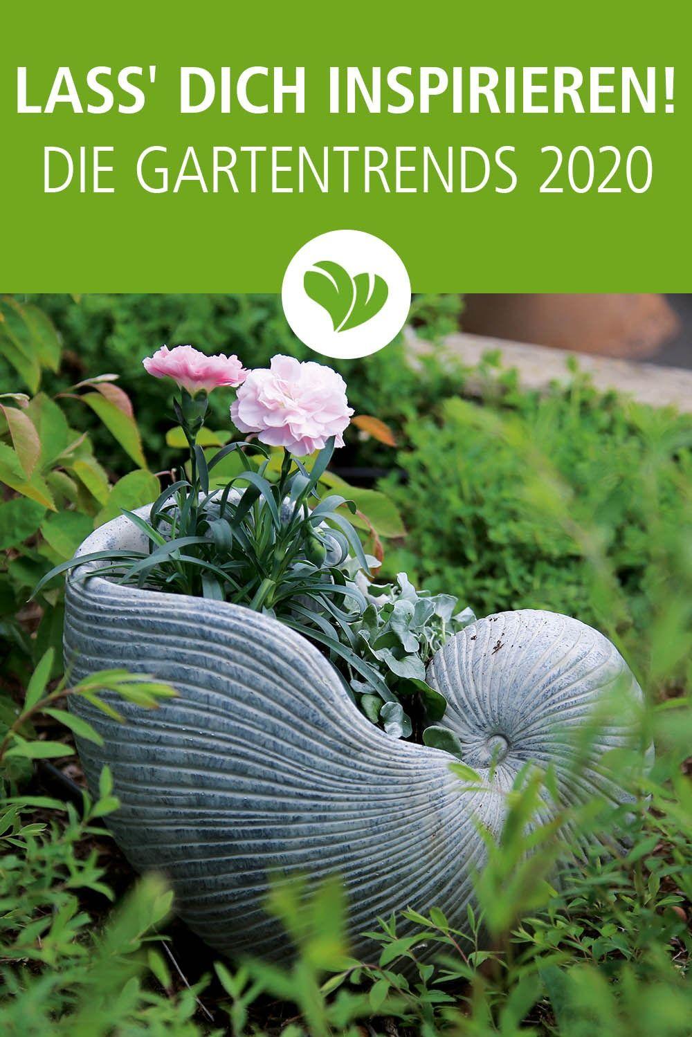 Gartendeko Und Zubehor Entdecken Garten Deko Pflanzen Garten