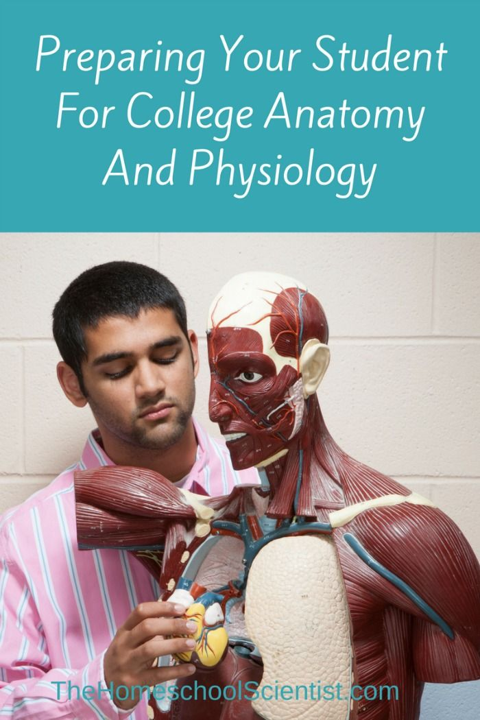 Preparing For College Anatomy And Physiology Anatomy College And
