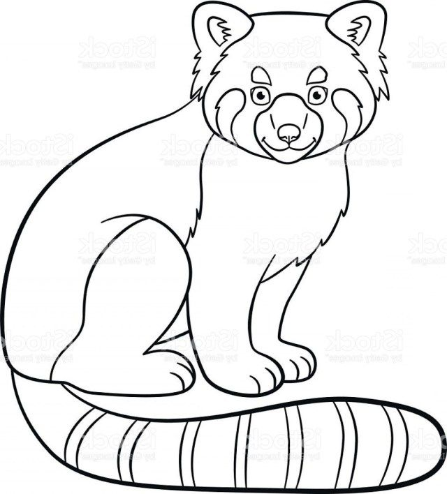 Exclusive Picture of Red Panda Coloring Page | Panda ...