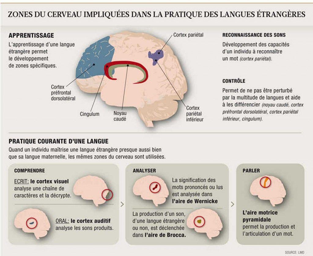 langues  u00e9trang u00e8res