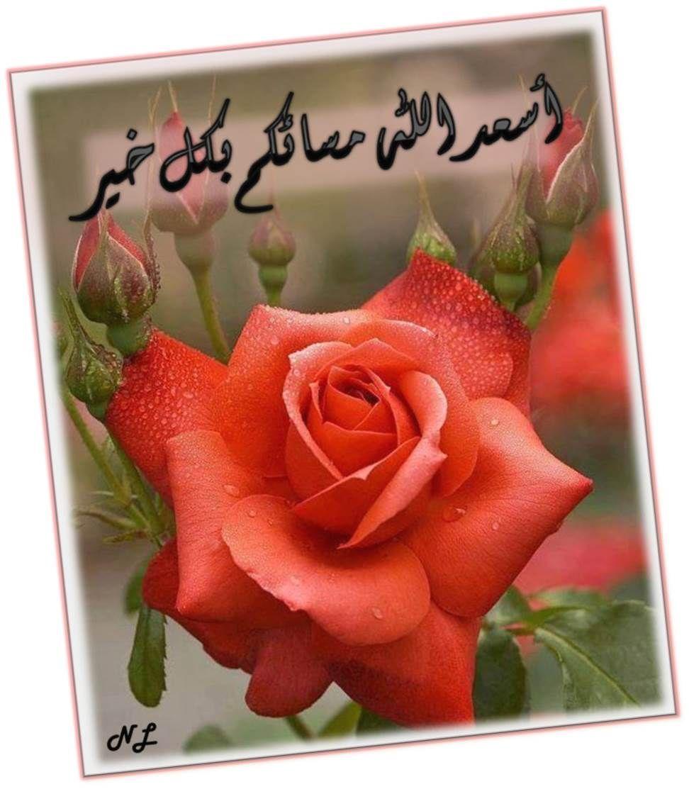 أسعد الله مسائكم بكل خير Greetings Save Image Arabic Quotes
