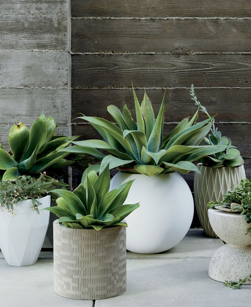 Sphere Small White Planter + Reviews | Crate and Barrel