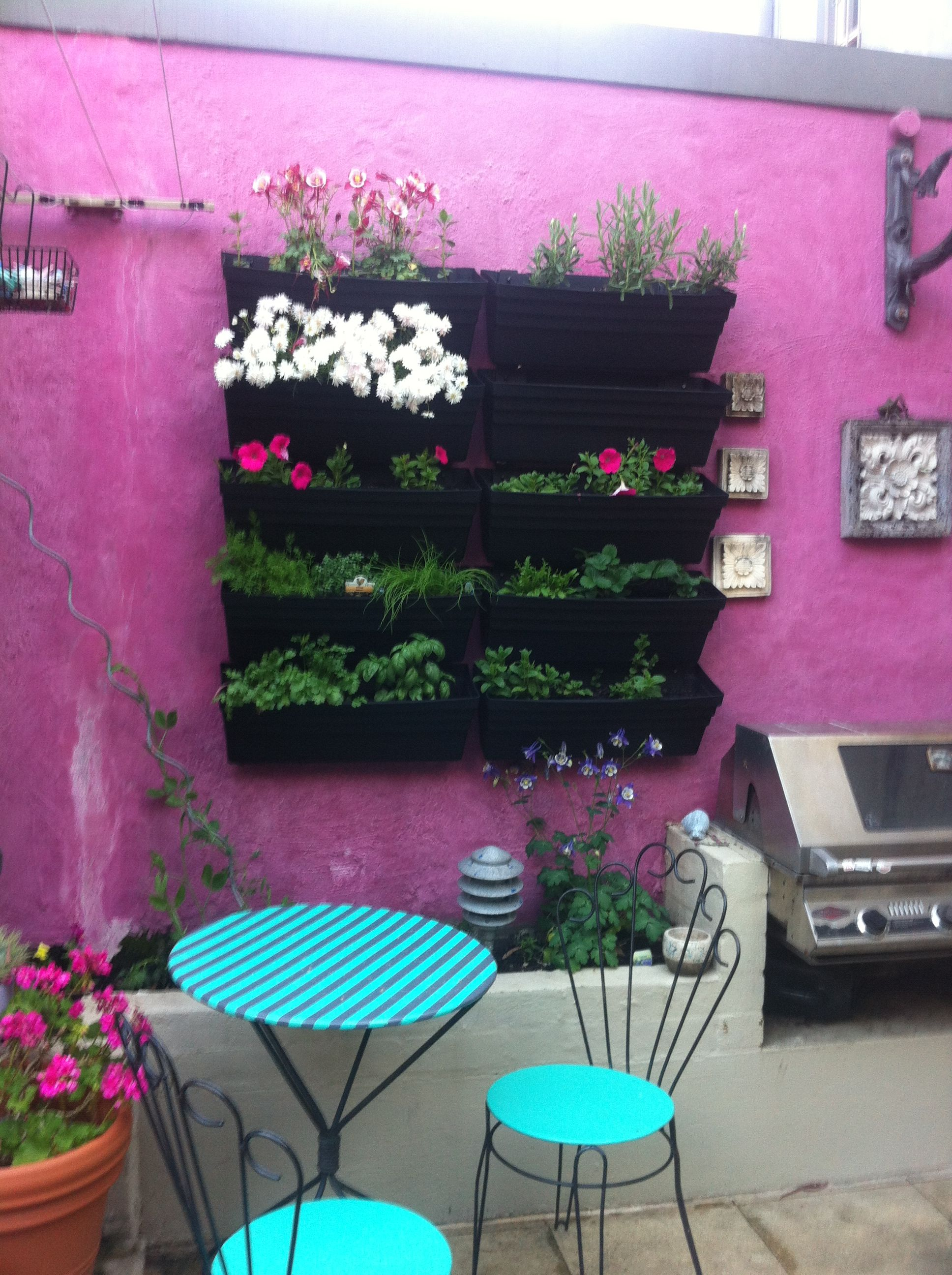 Lovely - would love to create something like this in our courtyard outside. x Our new wall garden.