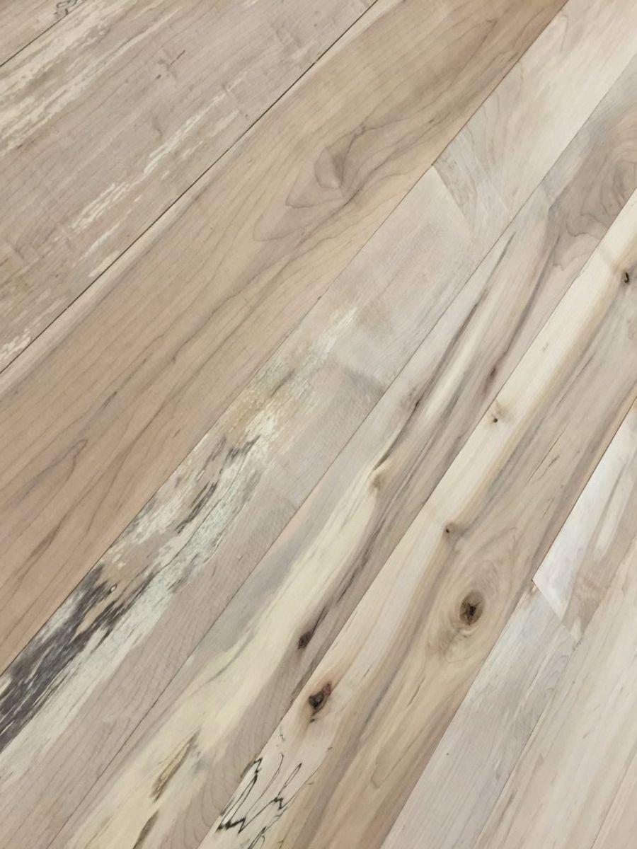 Pin On Windfall Maple Flooring