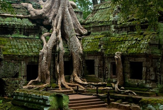 City of Temples in Cambodia  This temple complex was originally built in the early 12th century and served as Hindu and Buddhist sanctuary s...
