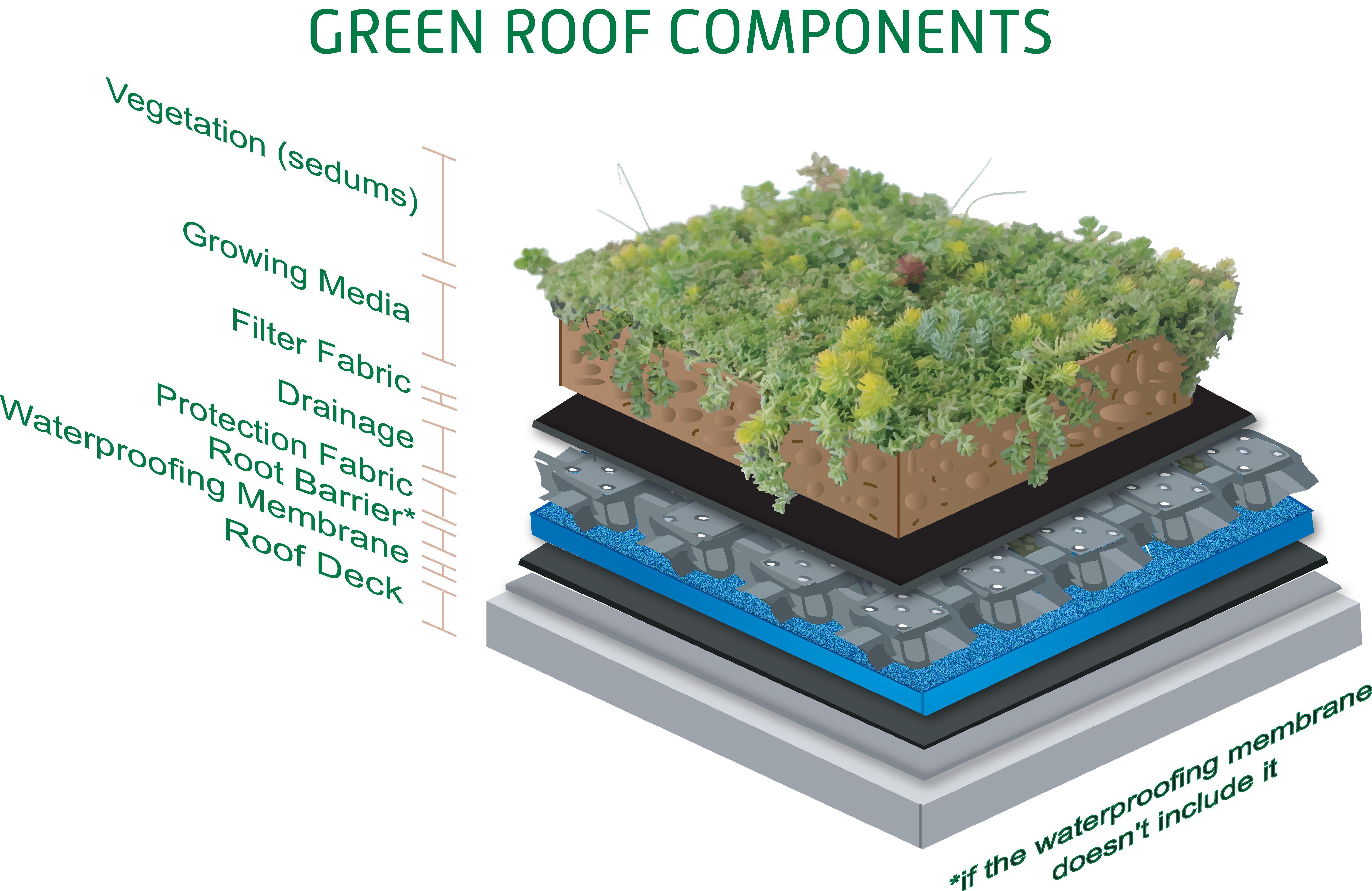 Green Sedum Roof Layering Components Sedum Roof Green Roof