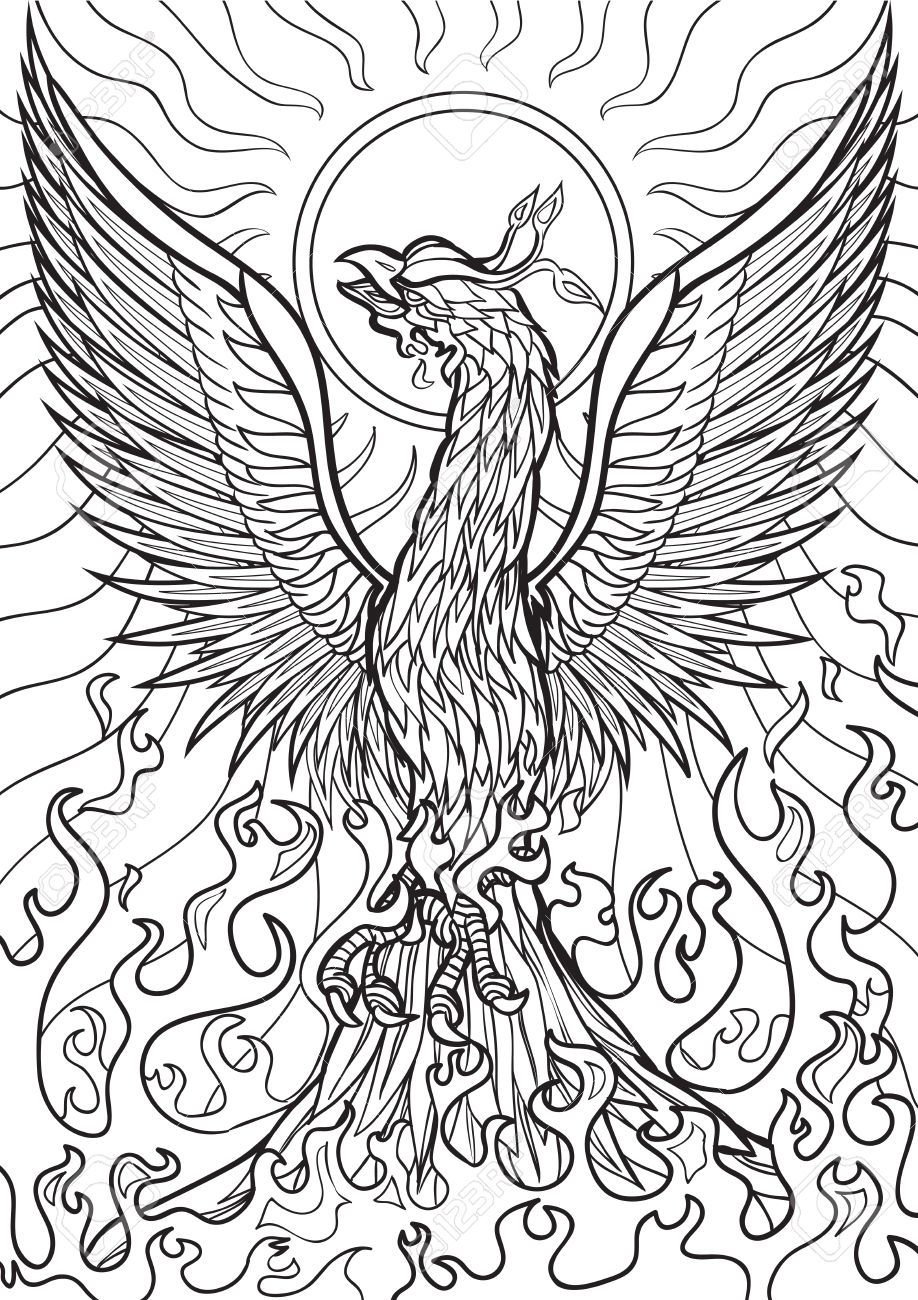 Image result for adult coloring book pages dragons mythical Complicated Coloring Pages Phoenix phoenix coloring pages for adults Mortal Kombat Coloring Pages