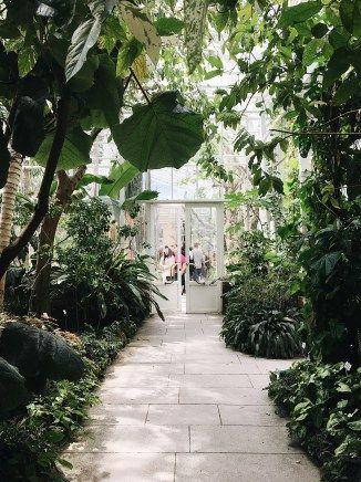 Fotoalbum Ein Nachmittag Im Botanischen Garten Munchen Revolution Baby Revolution Botanischer Garten Munchen Garten Munchen Botanischer Garten