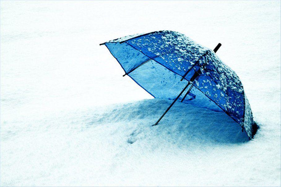 465666 Blue Umbrella P 908x606