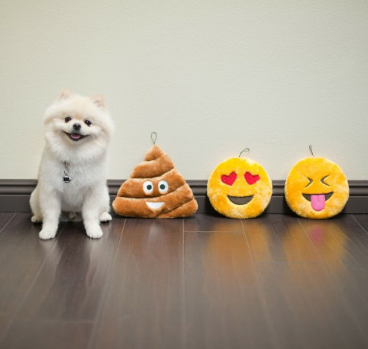 Emoji's for dogs! For when he needs to express himself
