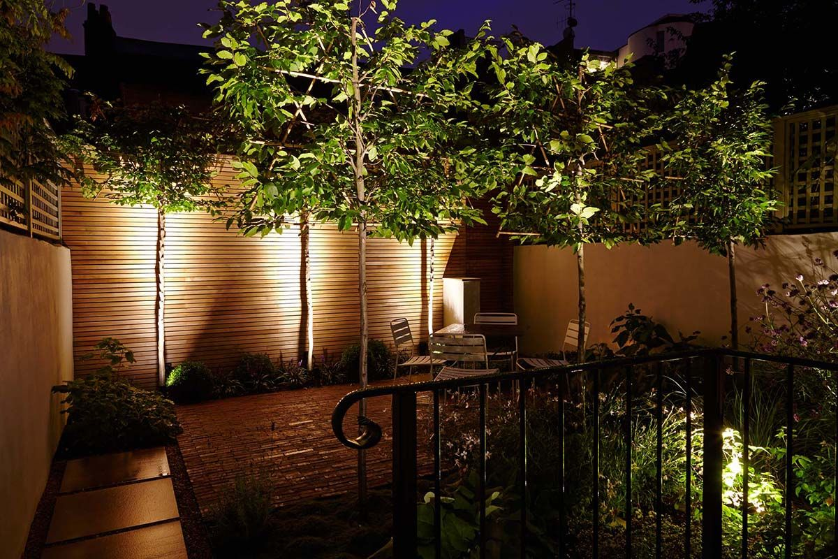 Townhouse garden and landscape design with lighting at night ...