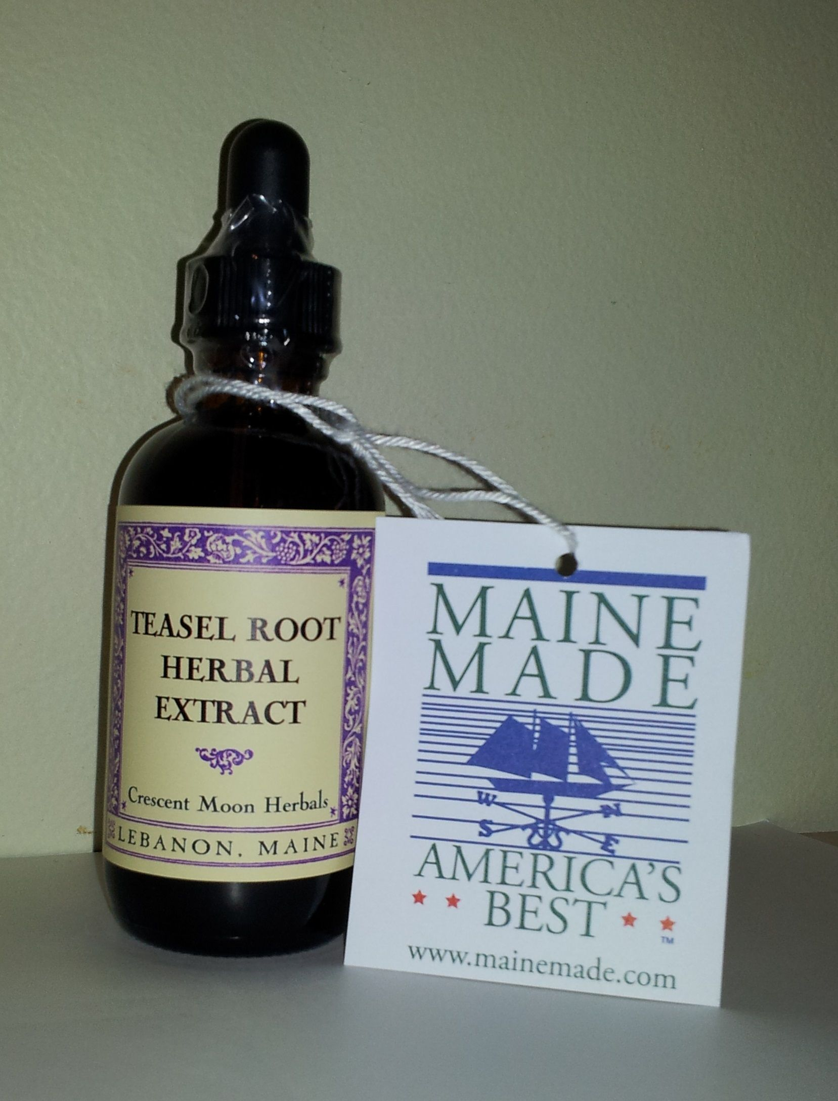 Teasel Root Tincture, Herbal Extract, Lyme, Protocol