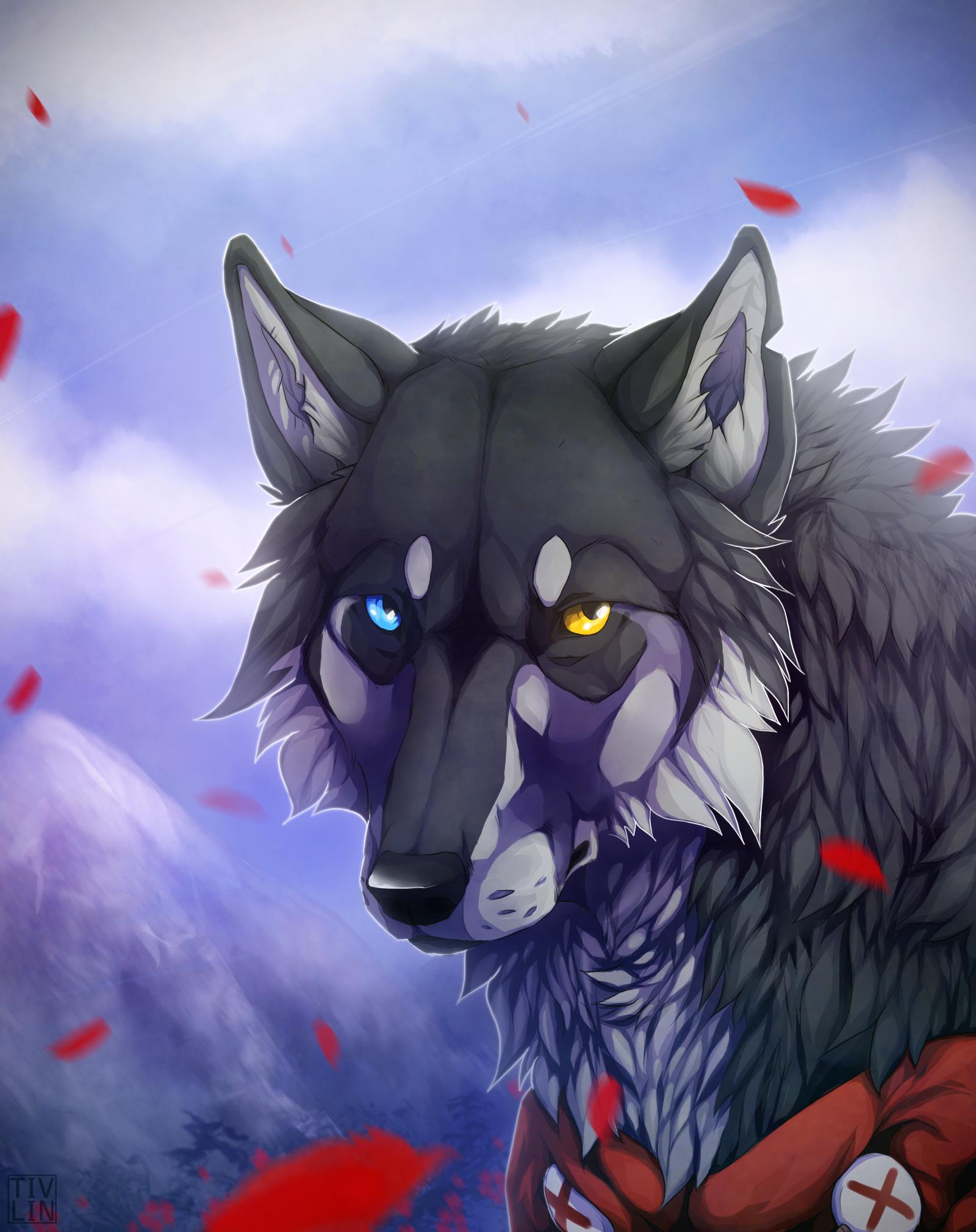 Красивые картинки волки аниме