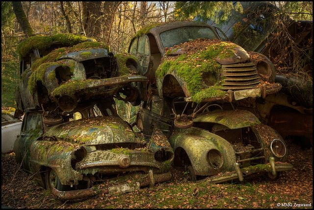 Car graveyard in Sweden. Very cool! Love the moss.