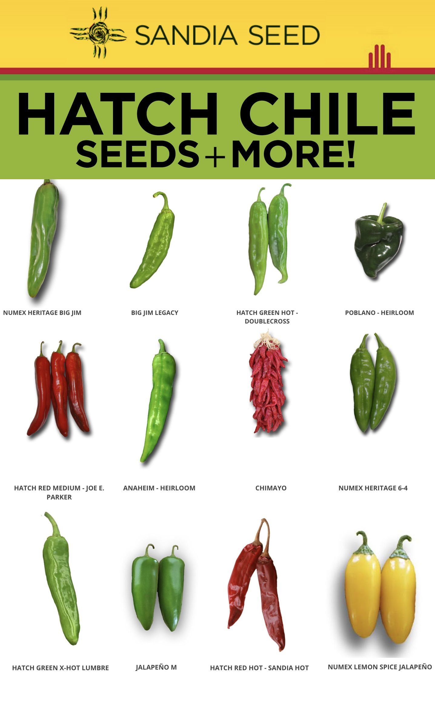 Hatch Chile Seeds Hot Pepper Seeds Sweet Pepper Seeds Heirloom Tomato Seeds Https Www Sandiaseed Co Hatch Chile Hatch Chile Recipes Hatch Green Chili