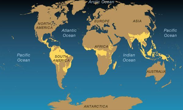 Rain forest map natural habitat maps activities rainforest map explore our deserts map with national geographic gumiabroncs Image collections