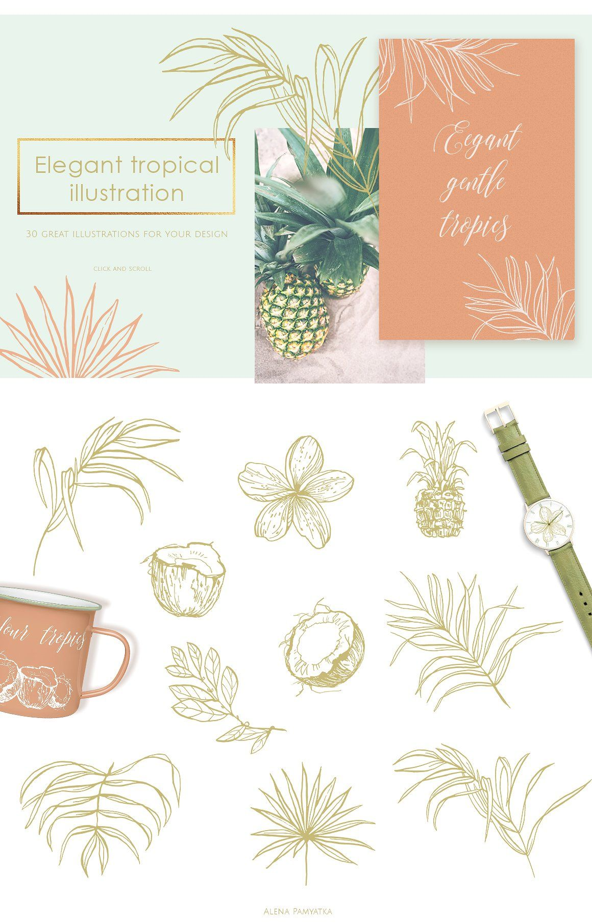 Tropical illustrations and patterns