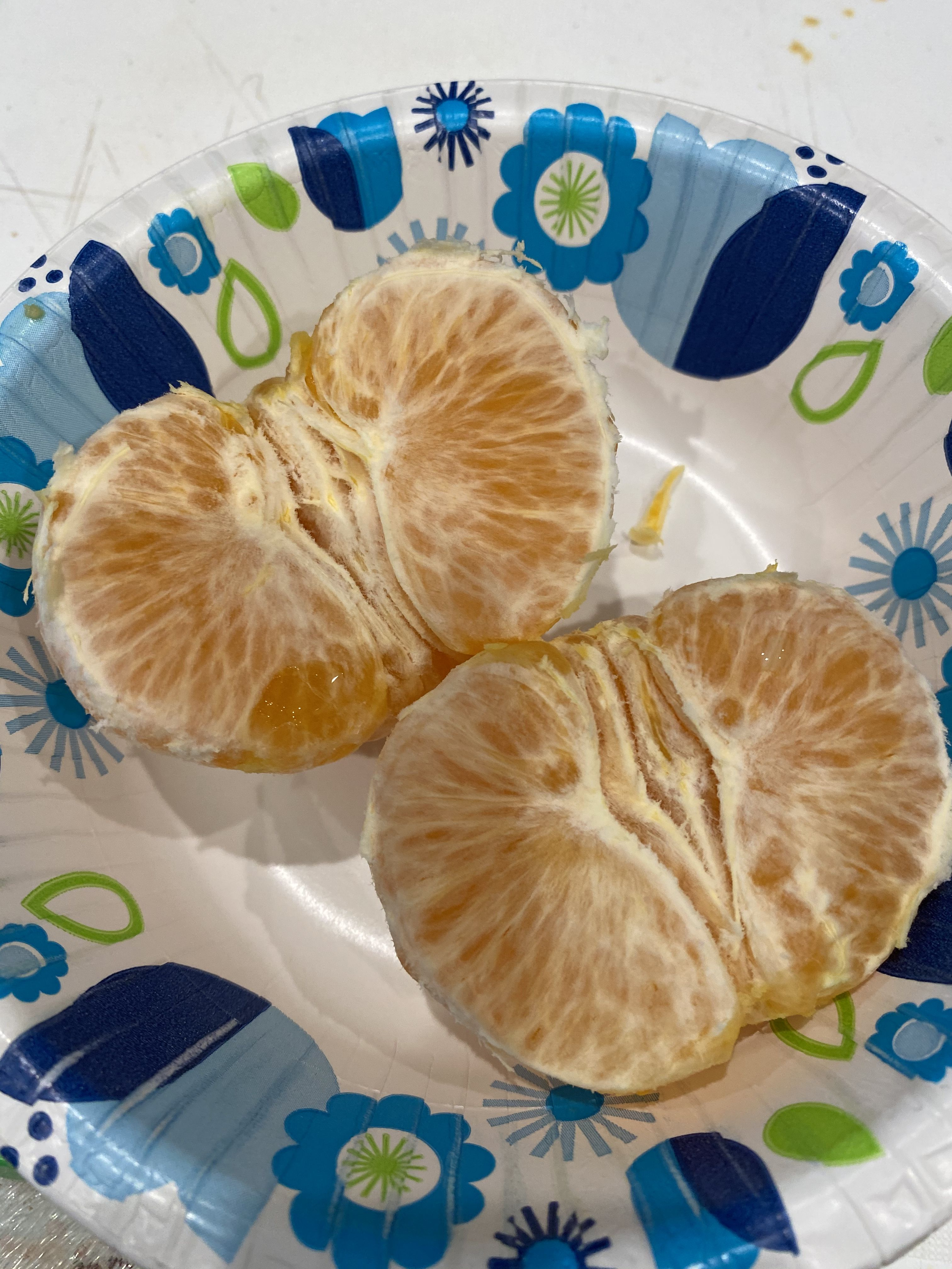 Dec 29 My First Gold Nugget Mandarin From My Tree It Was Delicious Delicious Food Photo A Day
