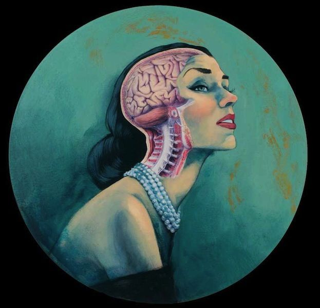 Vanitas, la naturaleza efímera de la belleza | Anatomía, Medicina y ...