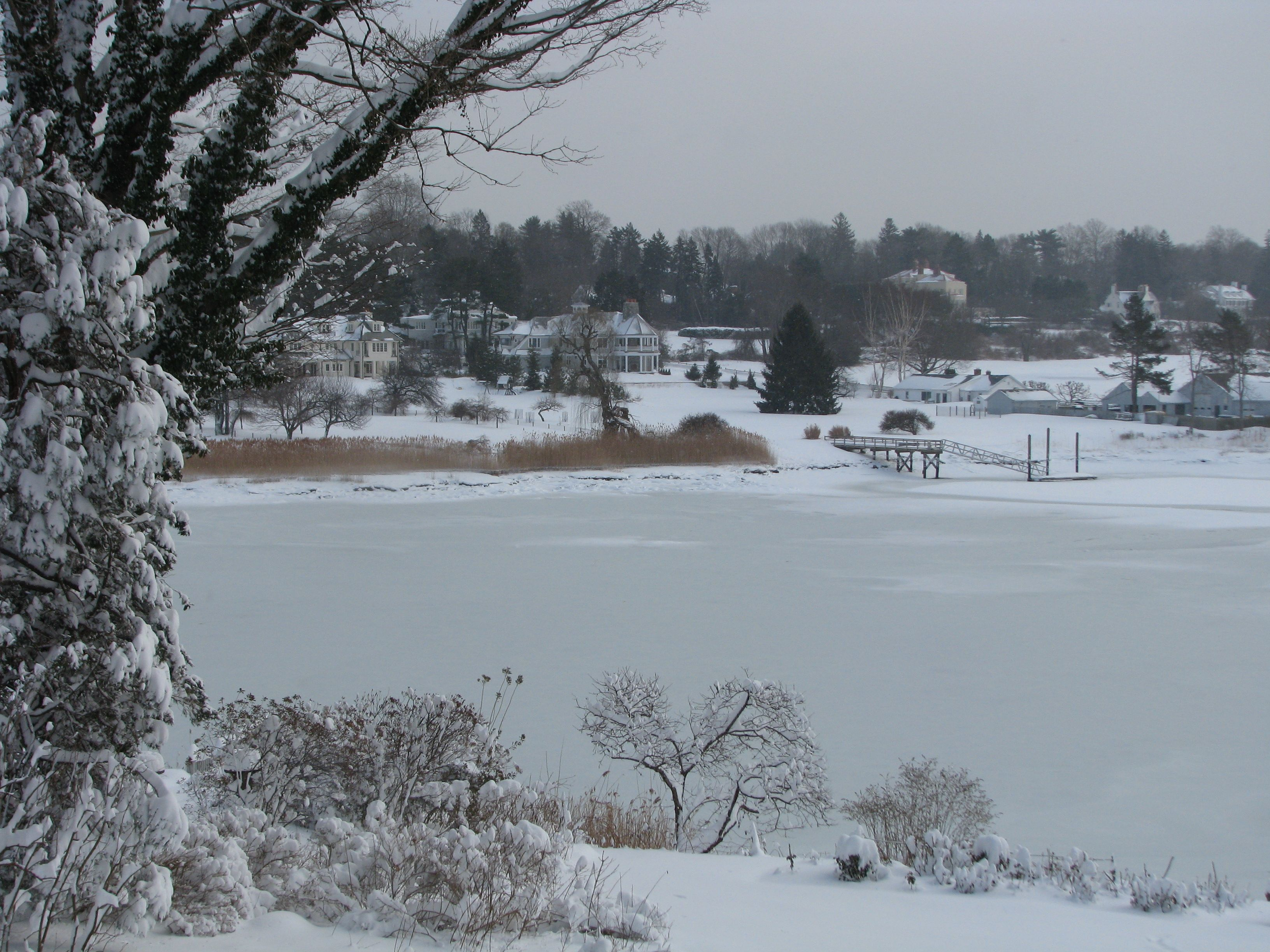 Harbor in the winter