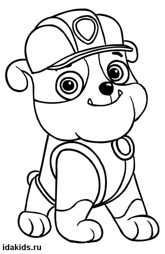 экскурсии картинки как нарисовать поэтапно рокки из щенячьего патруля зайке придавался