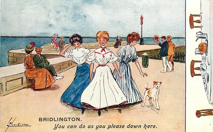 1909 YOU CAN DO AS YOU PLEASE DOWN HERE three pretty girls & dog move front intent on a good time,