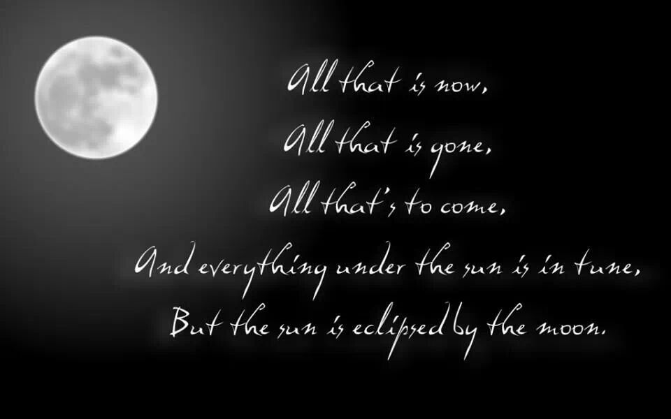 Dark side of the moon   Pink floyd, Song quotes, Song