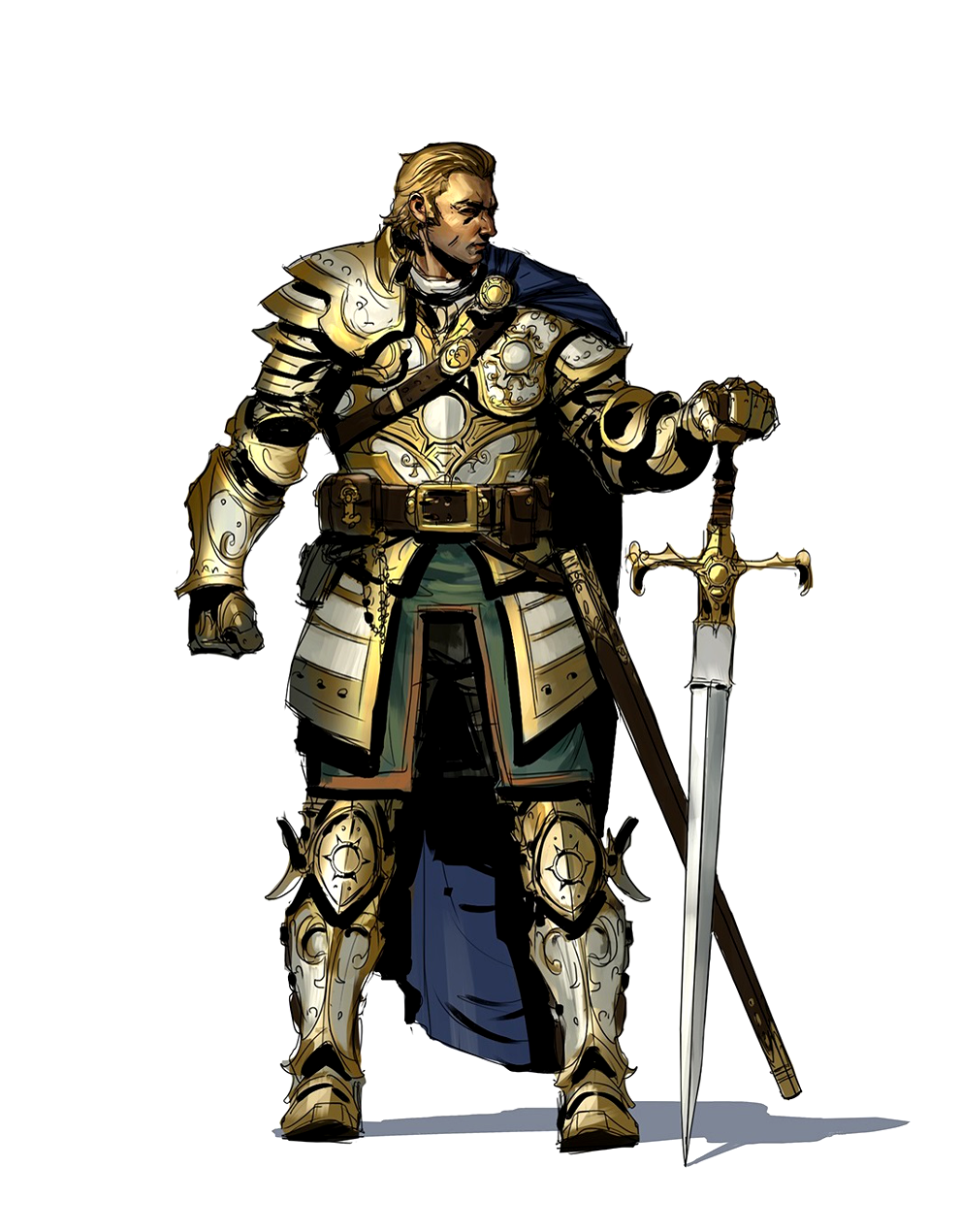 Image result for human paladin