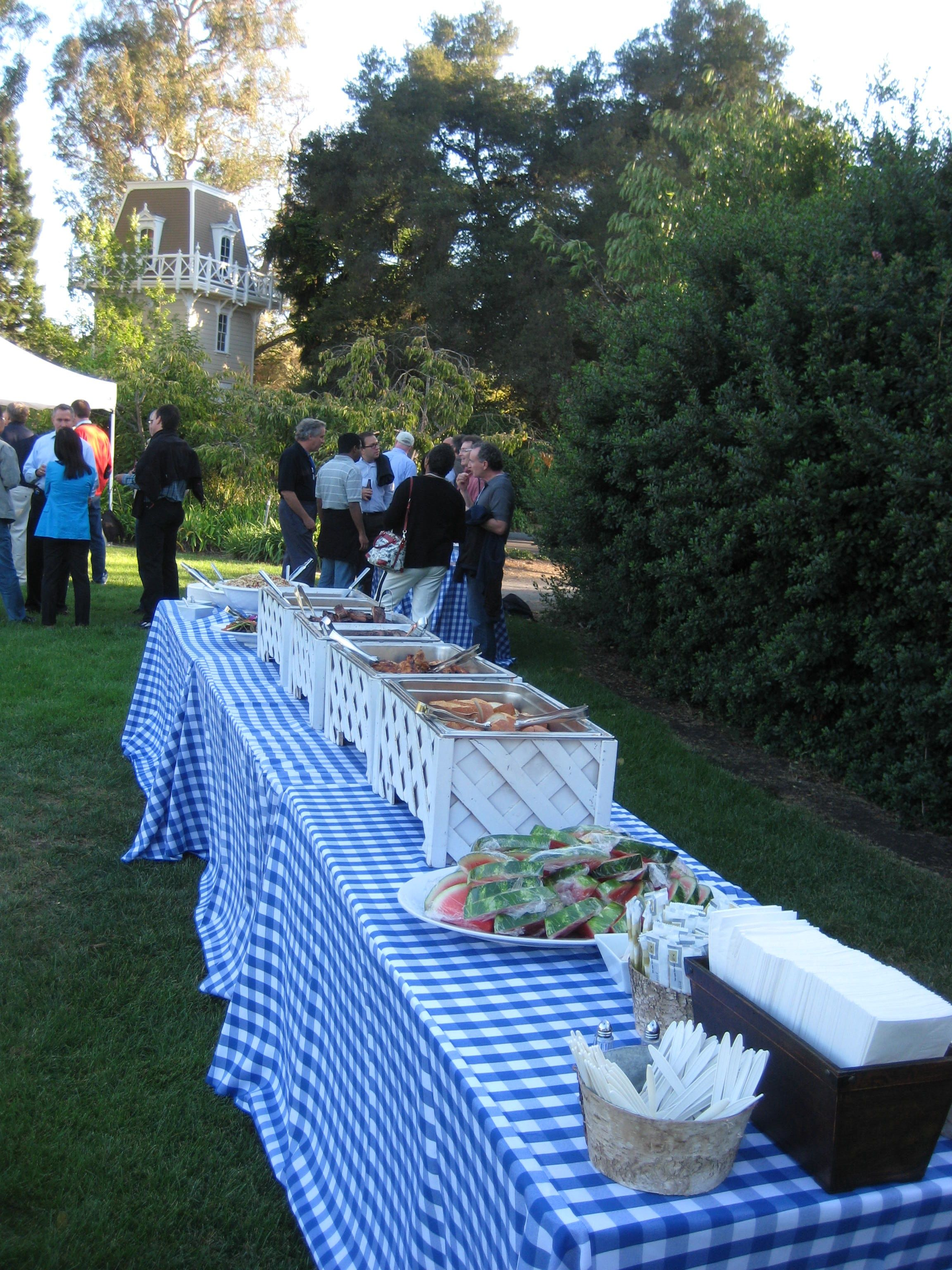 White Buffet Equipment On Blue And White Gingham Linen Outdoor Wedding Foods Party Buffet