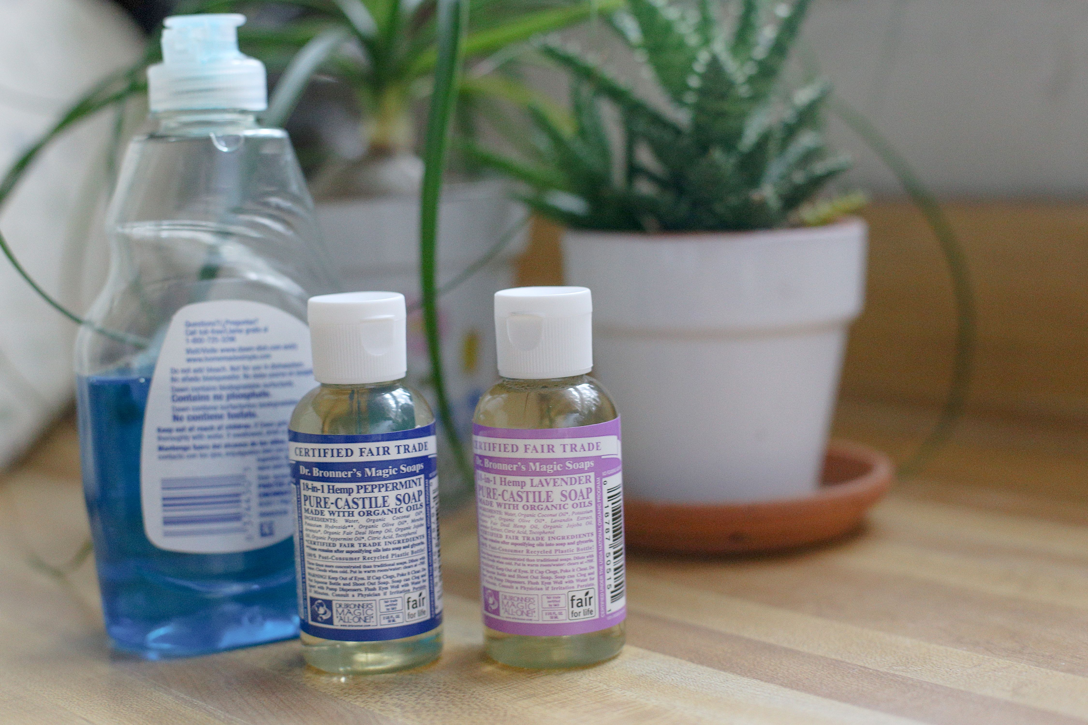 How to Use Dr. Bronners As Insecticidal Soap Plant pests