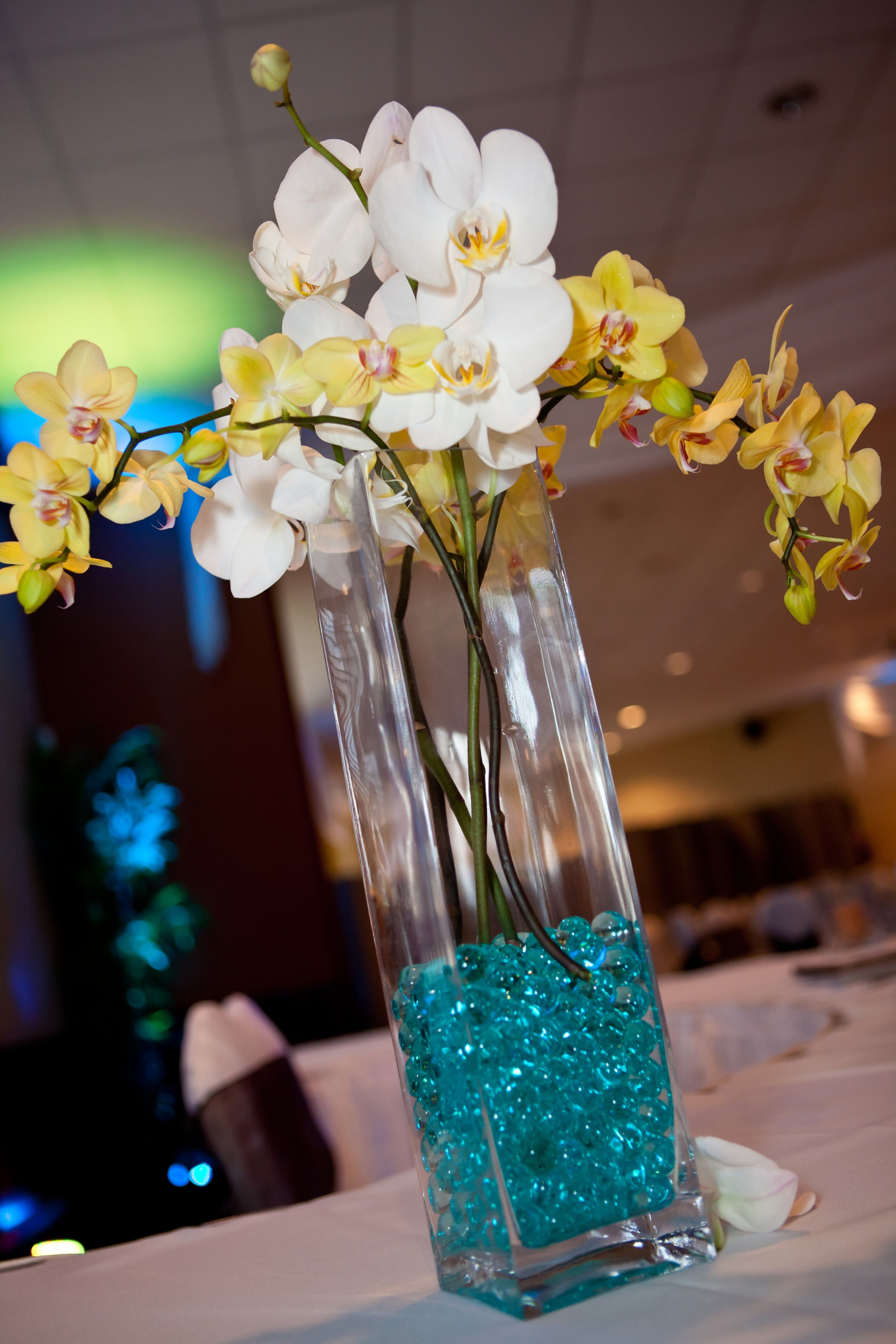 White and yellow orchids teal water beads square vases