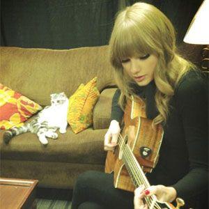 Meredith Swift Doesn't Like Taylor, So Says Ed Sheeran