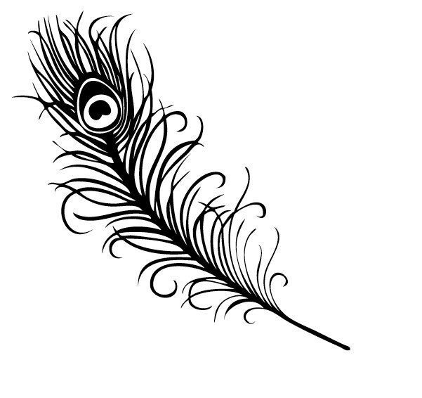 Peacock Feather Silhouette Feather Tattoo Design Sharpie