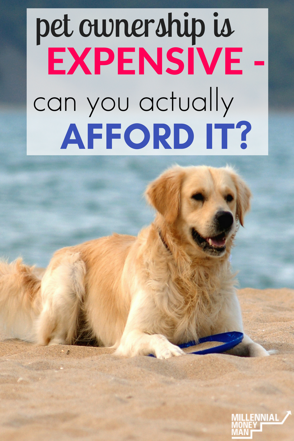 I Had No Idea How Expensive Pets Are Until It Was Too Late Thankfully This Post Has Some Great Tips About How To Save Money On Pe Pet Hacks Pets Pet