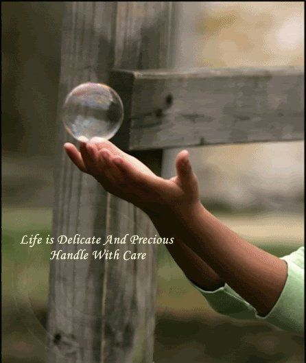 Delicate Life is precious, Picture quotes, Life quotes