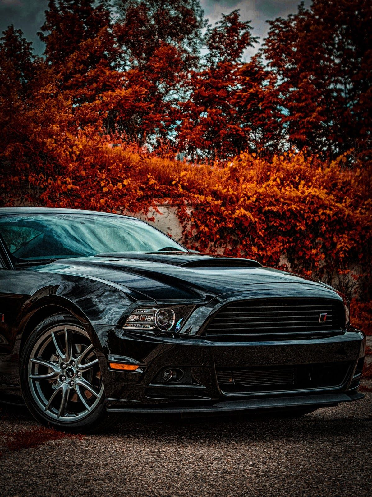Full Hd Car Background Hd Png
