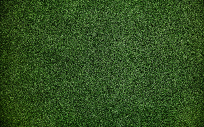 Scarica Sfondi Erba Texture 4k Verde Erba Sfondo Verde Texture