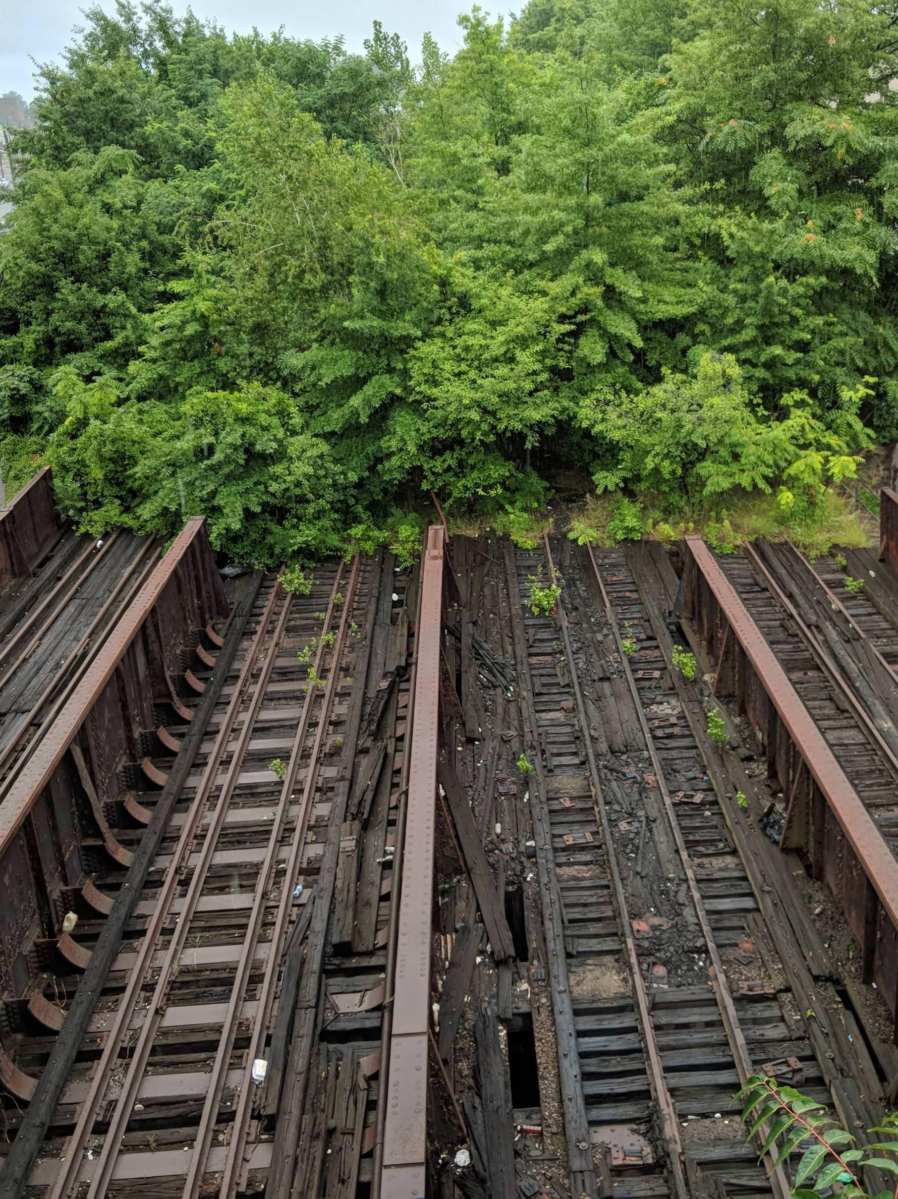 Abandoned Freight Rails In Downtown Elizabeth Nj 2265x3024 Oc
