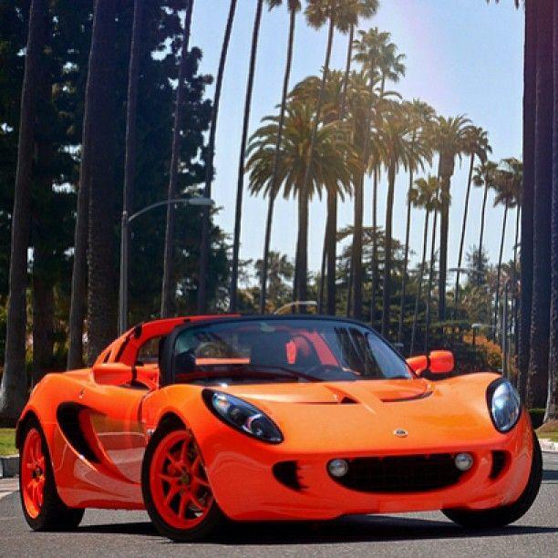5-Layer Pearl Orange Lotus