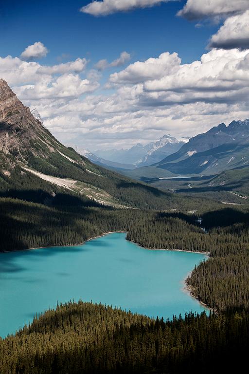 Lake Peyto (Banff National Park, Alberta, Canada)